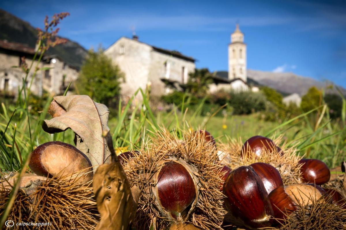 La Migiondara - Castagne e bontà d'autunno