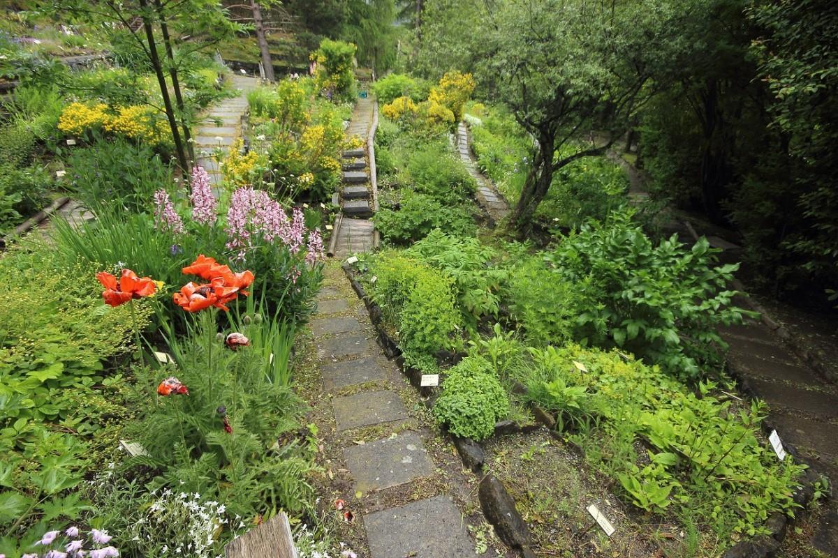 Alpine Botanical Garden Rezia