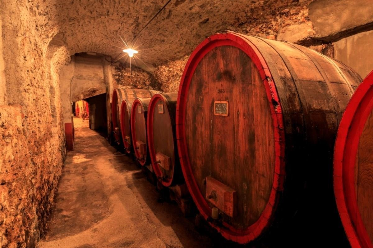 The Braulio Cellars