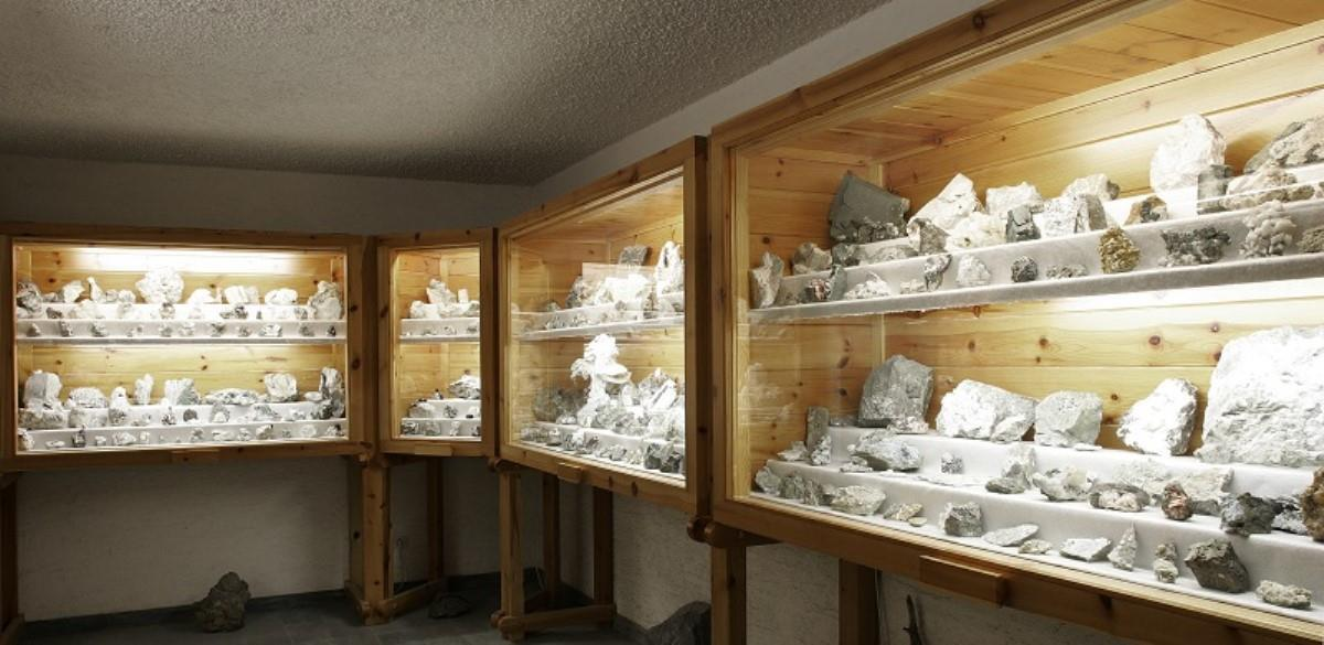 Mineralogical and Natural Museum