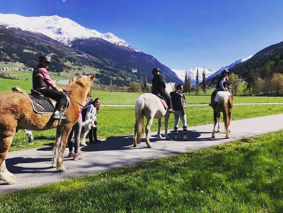Wild Horse Riding Centre